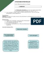 protozooses intestinales (4)