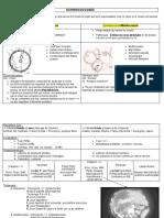 ECHINOCOCCOSES (3bis).doc