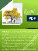 VEGETAÇÃO DO CERRADO 12ª SEMANA.pptx.pdf