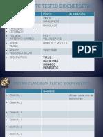 P8 Para testeo energetico.pdf