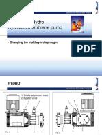 1_Change_memb_Hydro_GB_2008.pdf