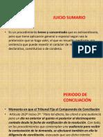Procedimiento Sumario.pdf