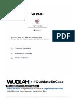 ESTRUCTURA DE COMENTARIOS DE TEXTO