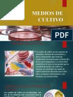 MEDIOS DE CULTIVO T.P. FANNY ESCALERA NIV.300.pptx