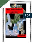 Análise de Riscos Ambientais e Lógica Fuzzy