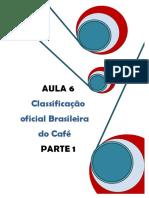 AULA_6._CLASSIFICACAO_PARTE_1