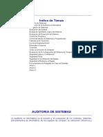 Manual Auditoria y Checklist