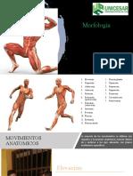 movimiento anatomicos terminado 1