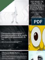 INFORME DE PRÁCTICA EXPERIMENTAL SENSACIÓN Y PERCEPCIÓN