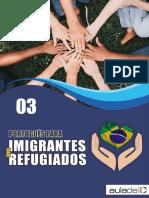 Imigrantes - Aula 03.pdf