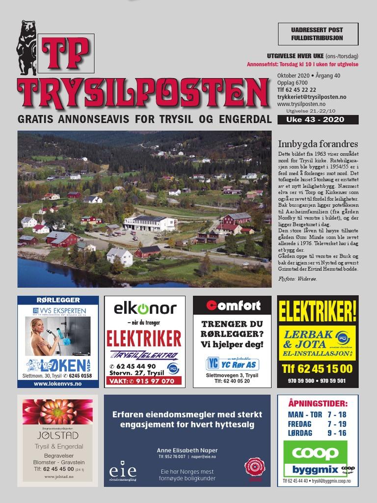 Trysil Kommune Avdeling Enslige Mindreårige - - Trysil - Se Regnskap, Roller og mer