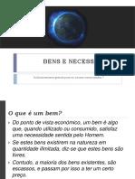 bensnecessidades 20.pdf