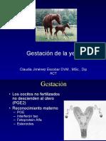 6. Gestacion yeguas.pptx