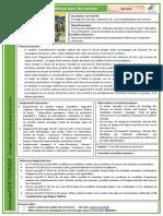 Dressage_des_animaux_pour_les_cources.pdf