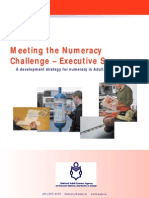 National strategy for developing numeracy - executive summary