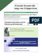 Cystus Compendium C19.pdf