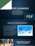 sector quinario.pptx