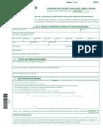 Declaracion_responsable_tecnico_competente_1