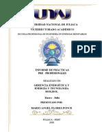 UNIVERSIDAD NACIONAL DE JULIACA INFORME DE MARIO ANGEL (1)-convertido.docx
