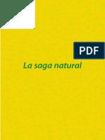 Capitulo_1_Germinacion_de_una_idea_-_Gallardo