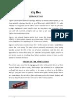 1.Zigbee Document