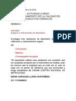 Actividad Semana 2_Diana Llano_Equipos e instrumentos de laboratorio..docx