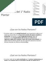 13- Biomecanica del 1° Radio Plantar