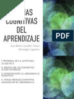cognicion y constructivismo.pdf