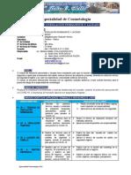 02_SILABO _ Ondulacion y laceado 2020-2 (6)