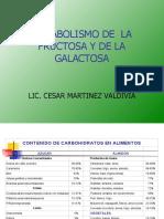 METABOLISMO DE LA FRUCTOSA.2019