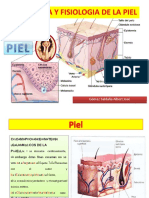 anatomiayfisiologiadelapiel-131114122848-phpapp02.ppt