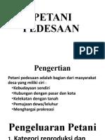 2. Petani Pedesaan