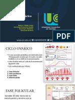 1. CICLO OVARICO Y AMENORREA - copia