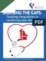 DSS - Bridging the Gaps Tackling Inequalities in Cardiovascular Disease - Copy