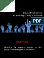 ANATOMIA RX INTRAORALES