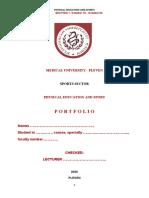 Portfolio 1.docx