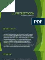 LA DEFORESTACION.pptx