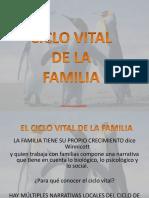 CICLO VITAL-
