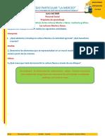 Actividad cultura Moche y Nasca pdf