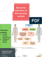 Bacterial infection of the nervous system