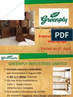 30886717-Green-Ply