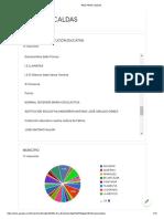 RED PRAE CALDAS Informe Consulta