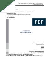 Entregable 1. tarea 2  Analisis Situacional y Estructura Organizacional  -caso- (1)