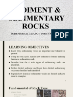 tOPIC 4 SEDIMENT & SEDMT ROCKS geology
