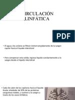 CIRCULACIÓN LINFÁTICA Y GANGLIOS.pptx