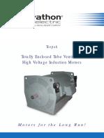 High-Voltage-Induction-Motors