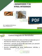 LOS NEMATODOS Y SU CONTROL INTEGRADO 2019.pdf