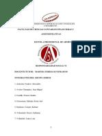 RSVI_ADMINISTRACION_CAÑETE_VALENZUELA GARCIA_TAREA COLABORATIVA