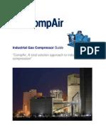 6519_25_1_08_Industrial Gas Compressor Guide