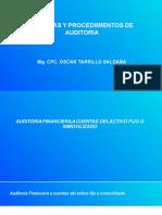 SEMANA 8. PLANIFICA Y EJECUTA AUDITORÍA FINANCIERA, RUBRO INMOVILIZADO.